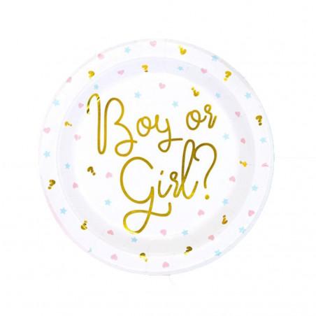 """Assiettes en carton """"Boy or Girl"""""""