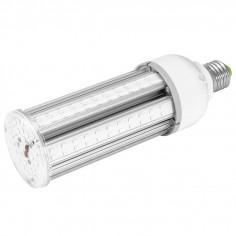 Ampoule Lumière Noire XL